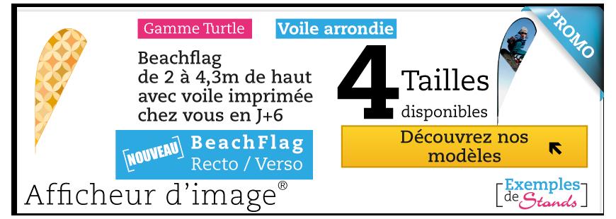 Beach Flag Turtle