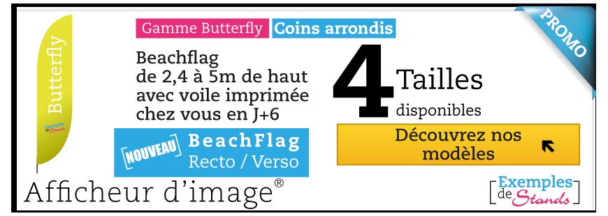 Beach Flag Butterfly